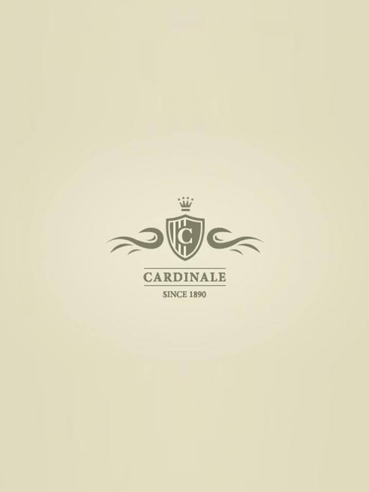 Cardinale 2013 Original wooden case of one magnum (1x150cl)
