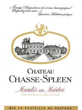 Château Chasse-Spleen 2015 Original wooden case of 12 bottles (12x75cl)
