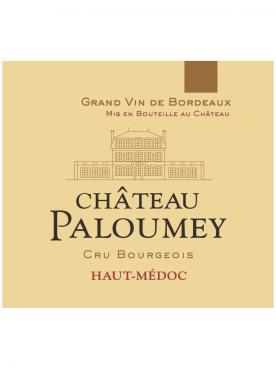 Château Paloumey 2017 6 bottles (6x75cl)