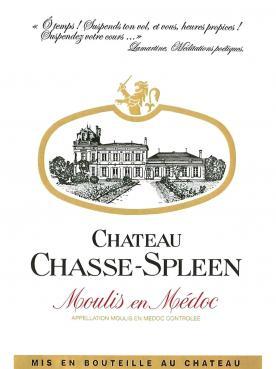Château Chasse-Spleen 2013 Original wooden case of 6 bottles (6x75cl)