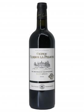 Château Cambon La Pelouse 2020 Bottle (75cl)